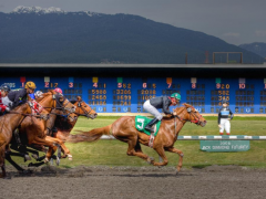 mobile horse betting sports betting online