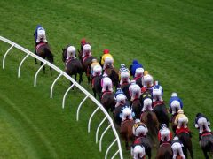 horse racing - betting on the underdog - online sports betting sites