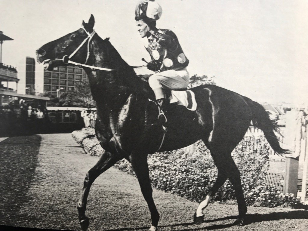 Tobin Bronze – 1960's Winning Australian Thoroughbred